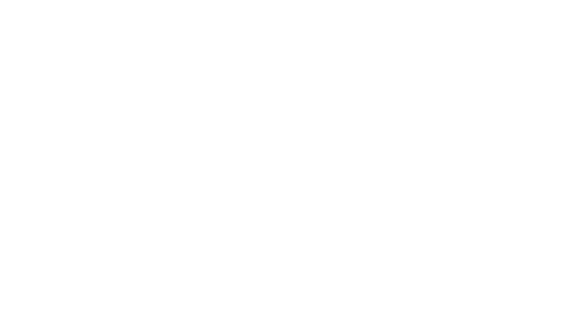 What is your FREEDOM?/OUR CONCEPT